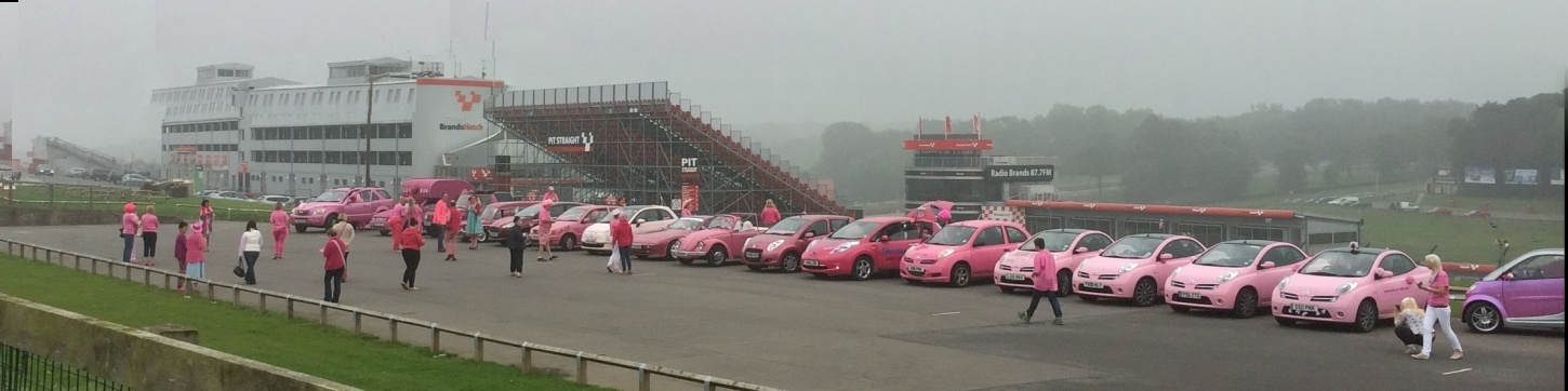 Tickled Pink for the Little Princess Trust!